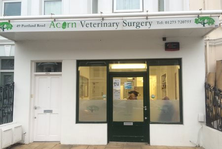 Acorn Veterinary Surgery, Hove