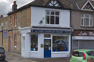 Alcombe Veterinary Surgery, Ealing
