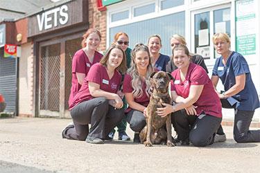 Alder Veterinary Practice, Spalding