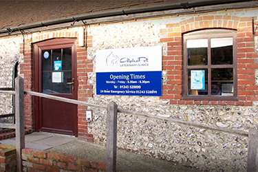 AlphaPet Veterinary Clinics, Chichester