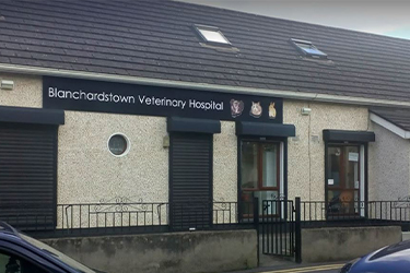 Anicare Vets, Blanchardstown Hospital