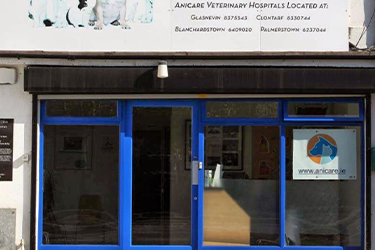 Anicare Vets, Santry Surgery
