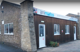 Animates Veterinary Clinic, Market Deeping