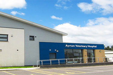 Ayrton Veterinary Hospital