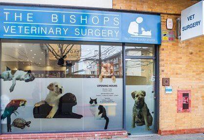 Bishops Veterinary Surgery