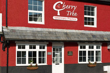 Cherry Tree Vets
