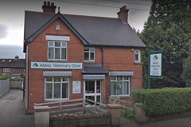 Clare Vet Clinic, Abbey