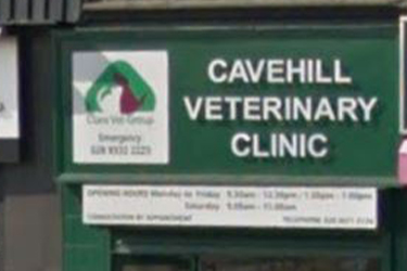 Clare Vet Clinic, Cavehill