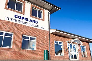 Copeland Veterinary Surgeons