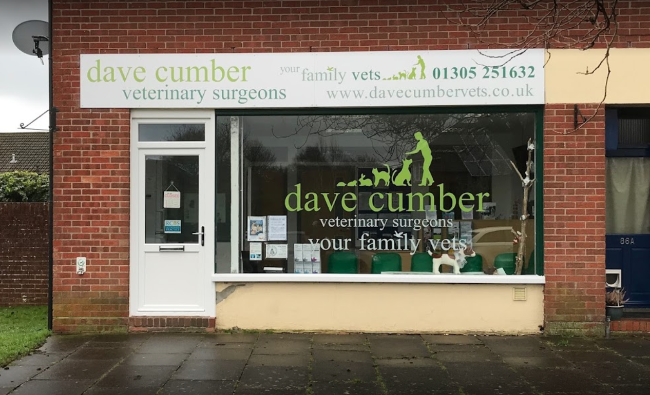 Dave Cumber Vets, Dorchester