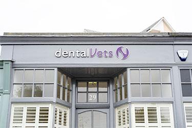 DentalVets