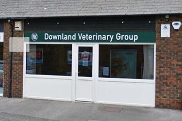 Downland Veterinary Group, Barnham