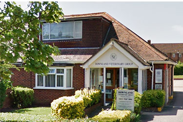 Downland Veterinary Group, Havant