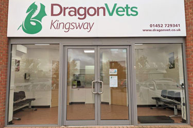 Dragon Vets, Kingsway