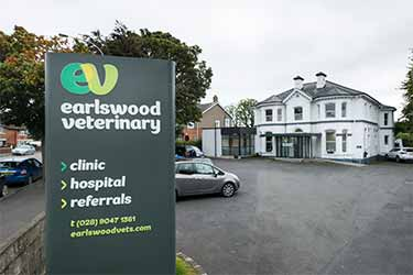 Earlswood Veterinary Hospital