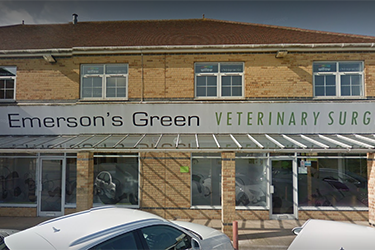Emerson's Green Veterinary Surgery