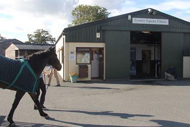 Fyrnwy Equine Group, Wrexham Equine Care