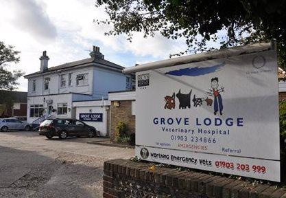 Grove Lodge Veterinary Group, Worthing