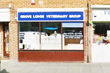 Grove Lodge Veterinary Group, Portslade