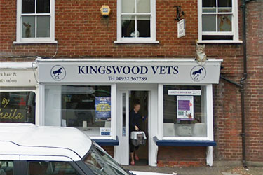 Kingswood Vets, Chertsey