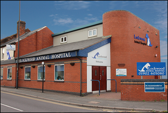 Lockwood Animal Hospital