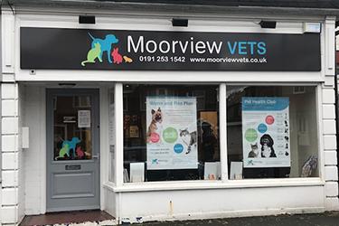 Moorview Vets, Monkseaton