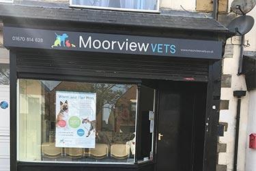 Moorview Vets, Newbiggin