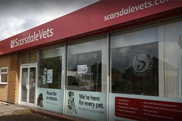 Scarsdale Vets, Shelton Lock