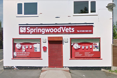 Scarsdale Vets, Stretton
