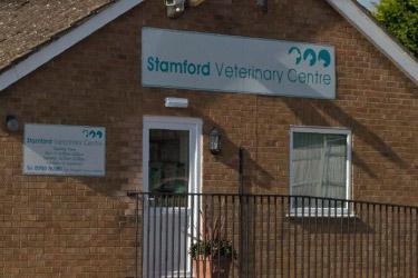 Stamford Vets