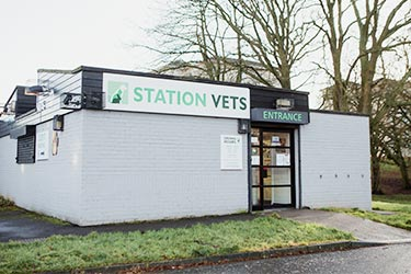 Station Veterinary Surgery