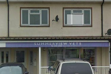Summerview Vets