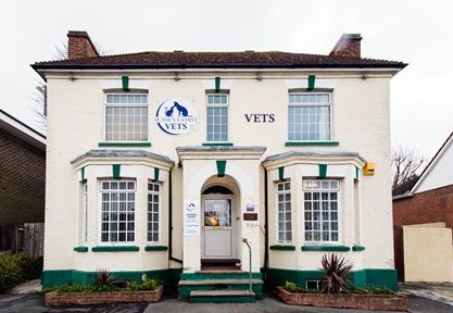 Sussex Coast Vets, Ashbrook