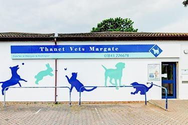 Thanet Vets, Margate