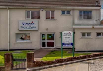 Victoria Veterinary Practice, Dowlais