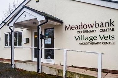 Village Vets & Meadowbank, Meadowbank