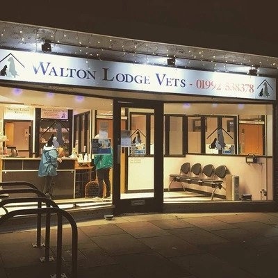 Walton Lodge, Bengeo