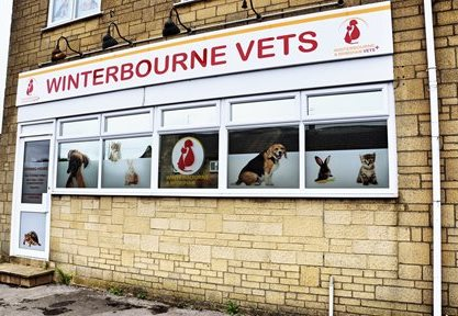 Winterbourne and Brimsham Vets, Winterbourne