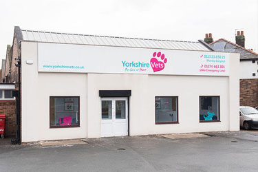 Yorkshire Vets, Morley Surgery